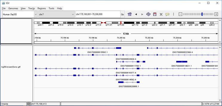 Genome配列から遺伝子領域を予測する
